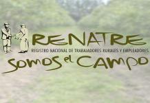 renatre