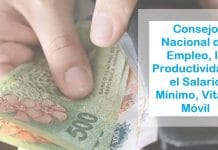 consejo del salario minimo