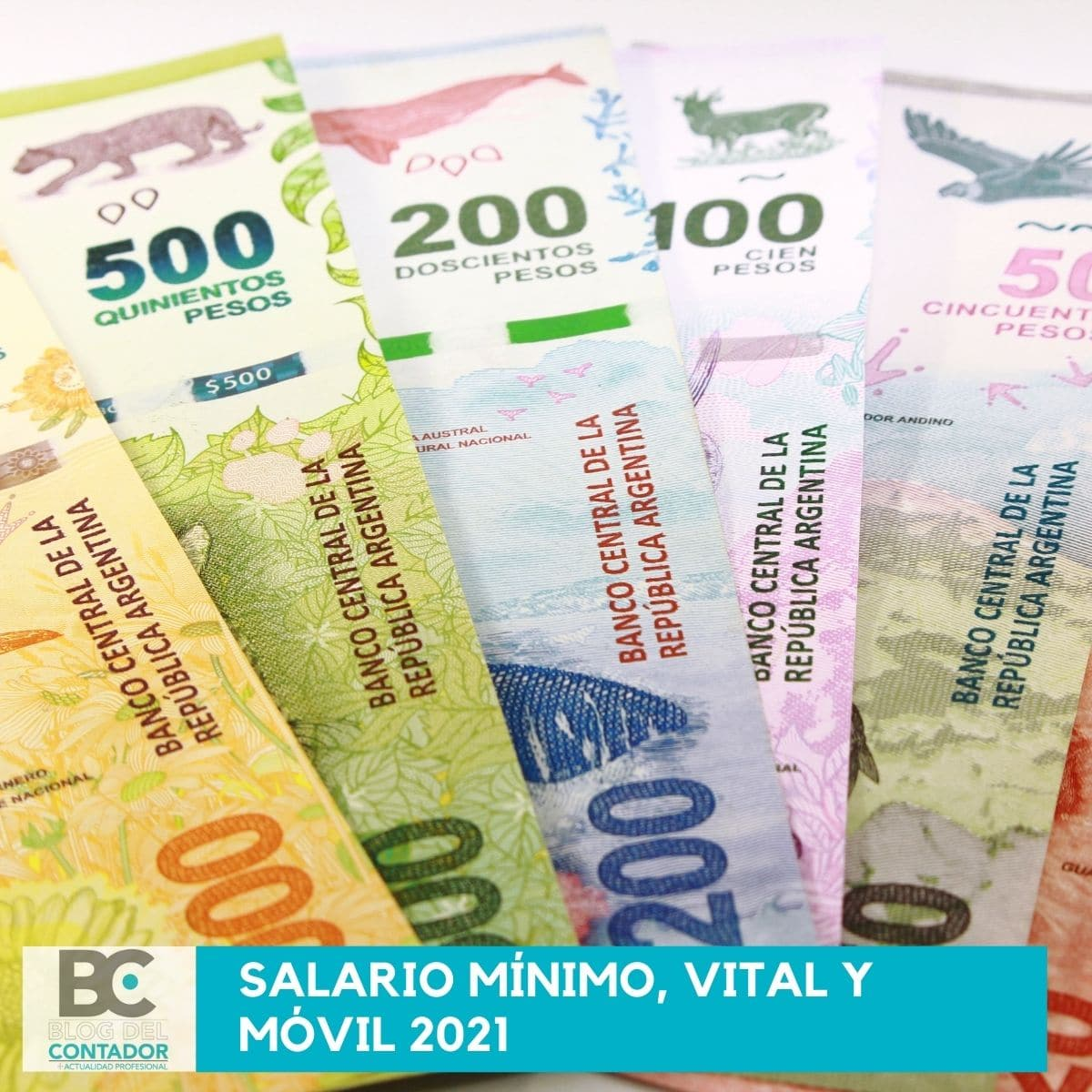 Salario Mínimo, Vital y Móvil 2021