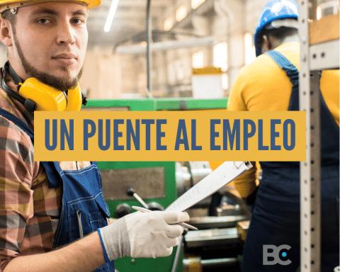 blanqueo laboral un puente al empleo